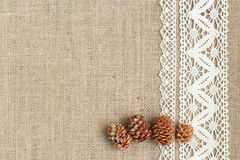 Burlap background with lace. And pine cones Stock Photography