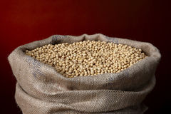 Burlap bag filled with soy beans Royalty Free Stock Photos