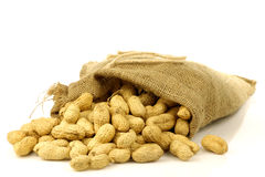 Burlap bag with roasted peanuts Stock Photography