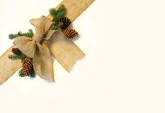 Burlap Christmas Bow and Pine Cones Frame on White Background Stock Photo
