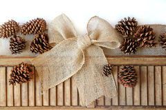 Burlap Christmas Bow and Pinecones Isolated on White Background Stock Image