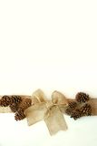 Burlap Christmas Bow with Pinecones Isolated on White Background Stock Photo