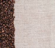 Burlap and coffee grains Stock Image