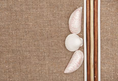 Burlap linen with wooden sticks and seashells Royalty Free Stock Images