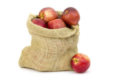 Burlap sack with apples Royalty Free Stock Image