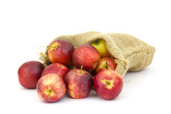 Burlap sack with apples Royalty Free Stock Photo