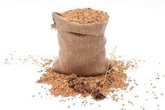 Burlap sack with buckwheat spilling Stock Photos