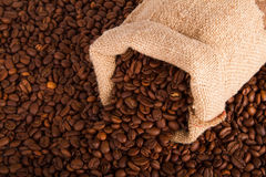 Burlap sack of coffee beans Stock Image