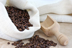 Burlap sack of coffee beans with a scoop. Stock Photography