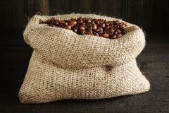 Burlap sack with coffee beans Stock Image