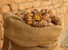 Burlap sack filled with walnuts Royalty Free Stock Images