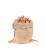 Burlap sack full of walnuts. Stock Image
