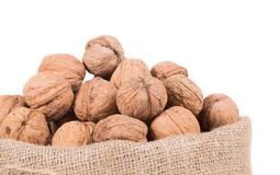 Burlap sack full of walnuts. Royalty Free Stock Photo