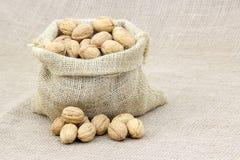 Burlap sack full of whole walnuts Stock Photography