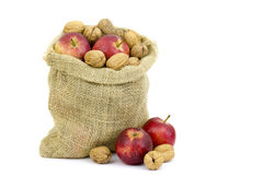Burlap sack full of whole walnuts and apples Royalty Free Stock Image