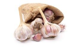 Burlap sack with garlic Stock Photography
