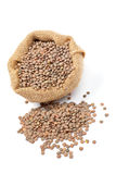 Burlap sack with lentils Royalty Free Stock Photos