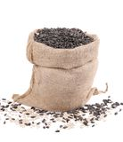 Burlap sack with sunflower seeds. Stock Images