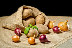 Burlap sack with vegetables Stock Photos