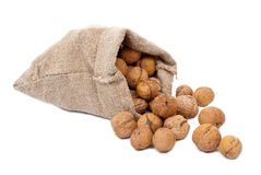 Burlap sack with walnuts Royalty Free Stock Photography