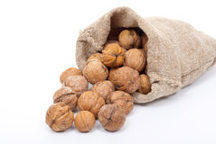 Burlap sack with walnuts Royalty Free Stock Photos