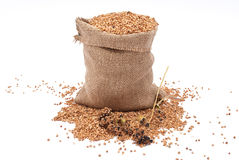 Burlap Sack With Buckwheat Spilling Stock Photos