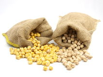 Burlap sacks with chickpeas Royalty Free Stock Photo