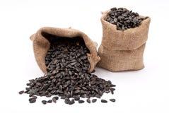 Burlap sacks with sunflower seeds Stock Photo