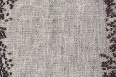 Burlap texture with coffee beans border Stock Images