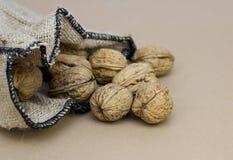 Fulla valnötter för säck Arkivbild