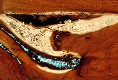 Burled redwoodträdbakgrund Arkivfoton