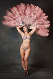 Burlesque dancer with feather fans Stock Images
