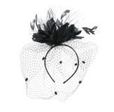 Burlesque Veil. Black burlesque veil isolated on a white background Royalty Free Stock Image