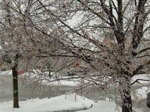 Burlington Ontário Canadá no inverno foto de stock