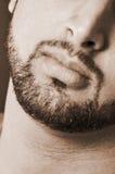 Burly male beard. Male beard sepia Stock Photography