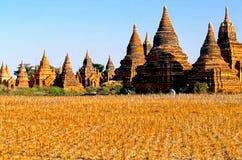 burma bagan ruiny Myanmar Zdjęcie Stock