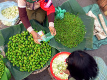 Burma Market Trade. Burma (Myanmar). Fresh Vegetable Market Trading between buyer and seller stock photo