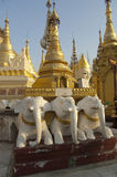 burma myanmar pagodashwedagon yangon Fotografering för Bildbyråer