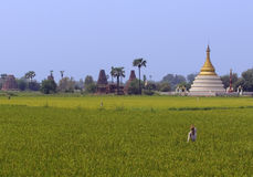 Burma rural scene Royalty Free Stock Photos