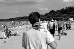 Burmakatt i den härliga stranden Jurmala Fotografering för Bildbyråer