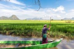 Burmese boatman in rice field Royalty Free Stock Photos