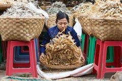 Burmese dry fish seller Royalty Free Stock Image