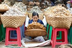 Burmese dry fish seller Stock Photo
