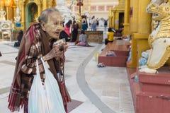 Burmese elderly women praying Buddha Stock Images