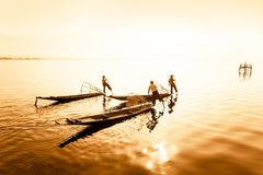 Burmese fisherman on bamboo boat catching fish. Myanmar. Burmese fisherman on bamboo boat catching fish in traditional way with handmade net. Inle lake, Myanmar stock image