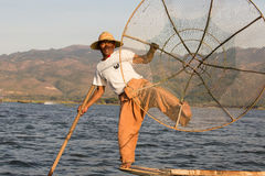 Burmese fisherman on bamboo boat catching fish in traditional way with handmade net. Inle lake, Myanmar, Burma Royalty Free Stock Images