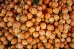Burmese grape Royalty Free Stock Photography