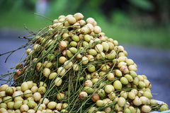 Burmese Grape Royalty Free Stock Photo