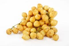 Burmese grape on white Stock Photography