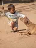 Burmese kid playing with a dog Stock Photos